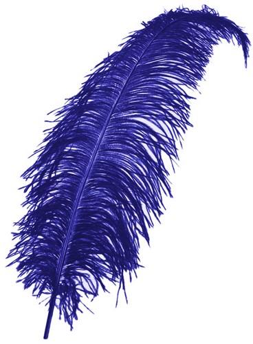 Struisvogelveer Blauw 50-60cm