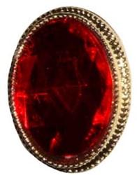 Sinterklaas Ring Rode steen