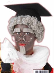 Zwarte Piet Pruik Grijs met Wenkbrauwen + sik