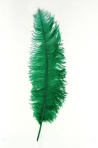 Struisvogelveer Groen ca. 60