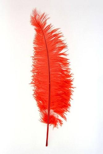 Struisvogelveren 50-60cm Rood