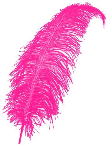 Struisvogelveren 50-60cm Pink