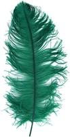 Baret Struisvogelveer Groen 60-70cm-2