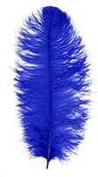 Baret Struisvogelveer Blauw 60-70cm