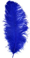 Baret Struisvogelveer Blauw 60-70cm-2