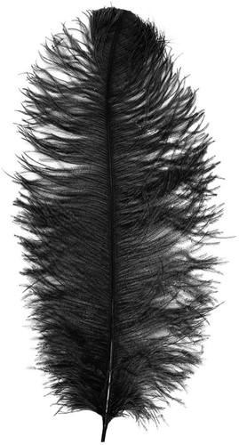 Baret Struisvogelveer Zwart 60-70cm