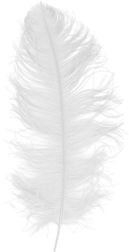 Baret Struisvogelveer Wit 60-70cm-2