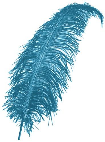 Struisvogelveren 50-60cm Turquoise