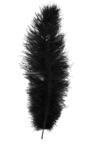 Struisvogelveer Zwart ca. 30cm